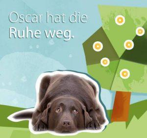 Oscar - Der smarteste Hund im Netz