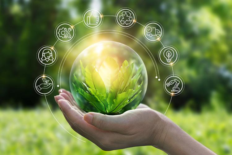 Weltumwelttag: Zwei Hände halten eine Kugel mit einer Pflanze drin.